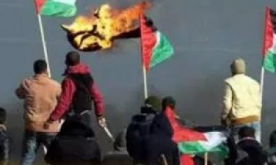 Pemuda Palestina; Romy Waeel Ishaq Qahman Akhirnya Syahid